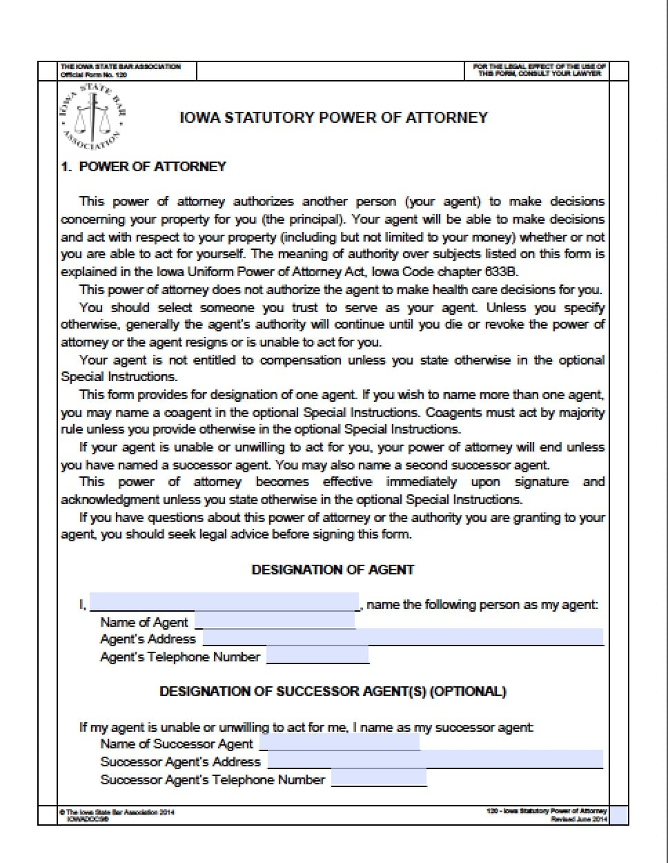 Iowa Durable Financial Power Of Attorney Form Power Of