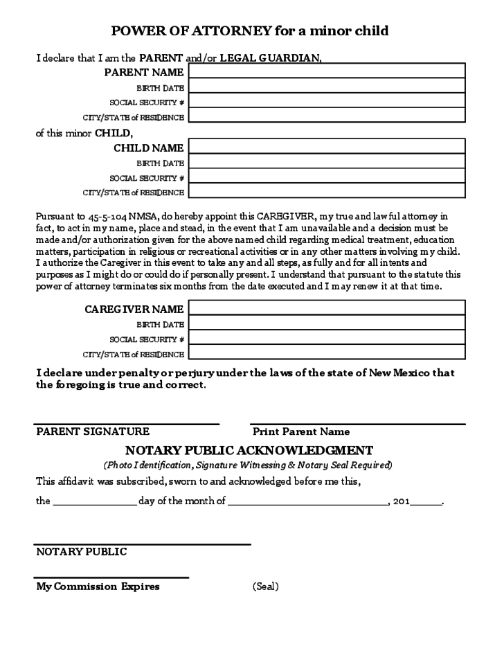 Power Of Attorney For A Minor Child Free Download